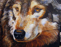 21 Wolf Close-upred.jpg - 24390 Bytes