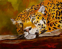 Leopardred.jpg - 14690 Bytes